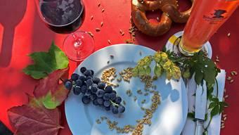 Schöne Herbsttage locken mit einer Bier- und Weindegustation.