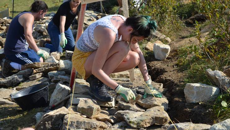 Die Jugendlichen beim Bau der Trockenmauer auf dem Grenchenberg.