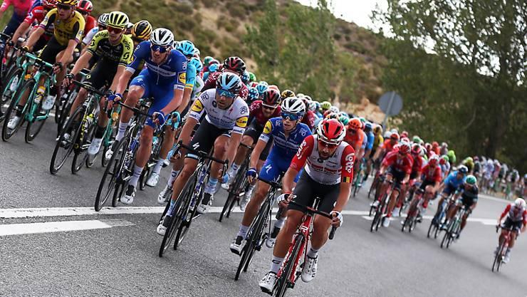 Das Fahrerfeld während der 19. Etappe der Vuelta