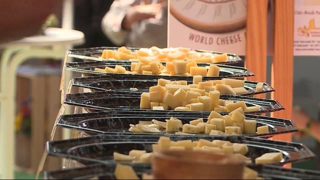 Natürlich viel Käse zum Probieren