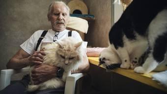 Günther Weber bietet alten oder verhaltensgestörten Katzen ein Asyl.
