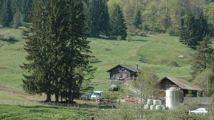 Auf dem Subigerberg, etwa im Bereich des parkierten weissen Lieferwagens, wird der Neubau der Vogelberingungsstation erstellt.