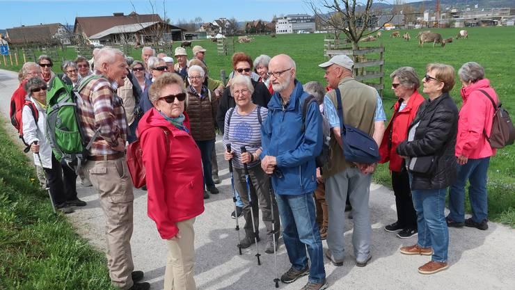 Nach einer kurzen Begrüssung durch den Wanderleiter nahmen wir den Marsch über den Seedamm Richtung Rapperswil unter die Füsse