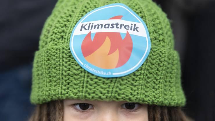 Klimastreik der Jugendlichen: Die Bewegung fragt sich, wie sie mit den Wahlen 2019 umgehen soll.