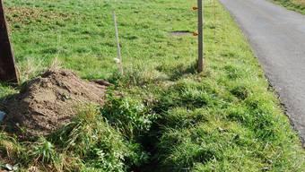 Offener Bachlauf: Im Landwirtschaftsland links, entlang der alten Badenerstrasse, soll bald das Ibisguet-Bächlein plätschern. (sl)