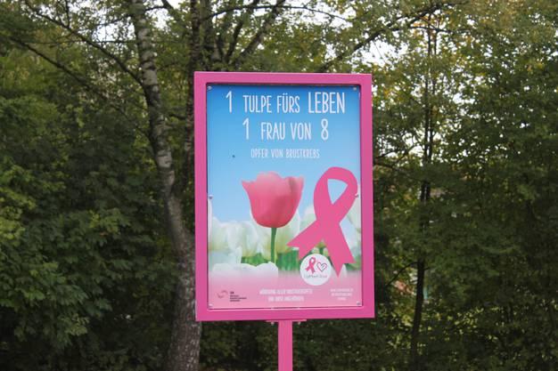 Infotafel der Organisation «L'aiMant Rose»von Brustkrebs-Betroffenen