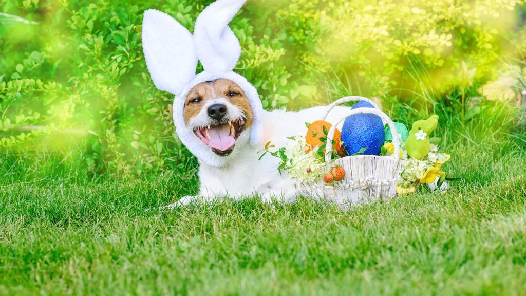 Was weisst du über Ostern?