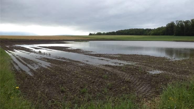 Oft bleibt das Wasser lange auf den Feldern liegen wie beispielsweise in der Moosmatten.
