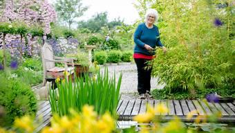 Die Künstlerin Helena Dutoit Gersbach öffnet am Tag der offenen Gärten ihr kleines Paradies in Hirschthal.