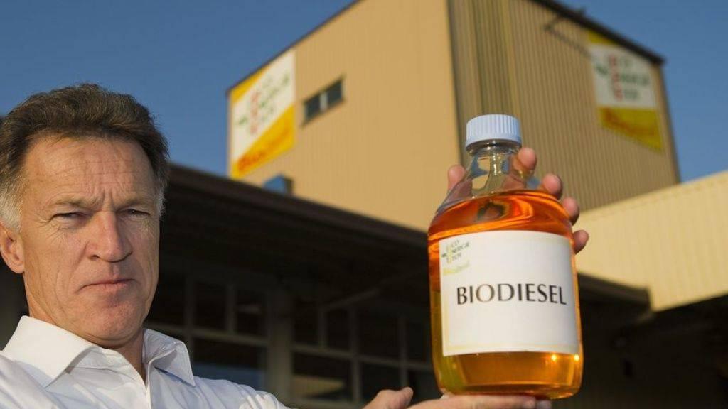 Potenzial von Energie aus Biomasse wird laut Studie überschätzt