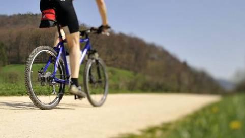 Der Mountainbike-Fahrer trug nach ersten Erkenntnissen keinen Velohelm. (Archivbild)