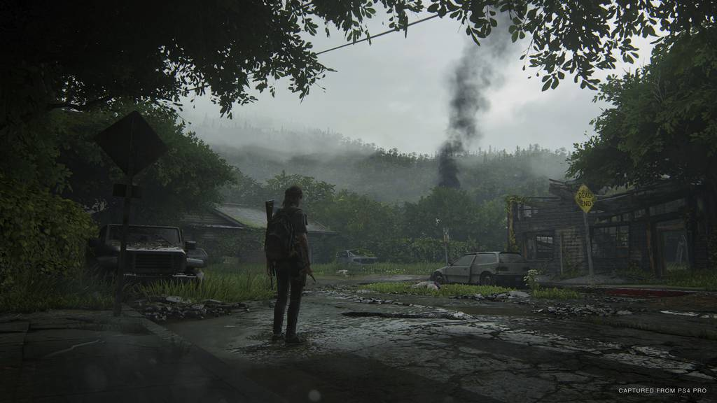 Last of Us Screenshot 3