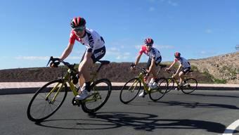 Das Bike Team Solothurn lockt mit guten Leistungen wichtige Sponsoren an.