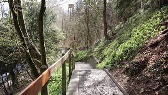Offizieller Umweg, wenn der Promenadenlift nicht fährt: Die Treppe am Oelrain, von Bärlauch und Lerchensporn gesäumt.