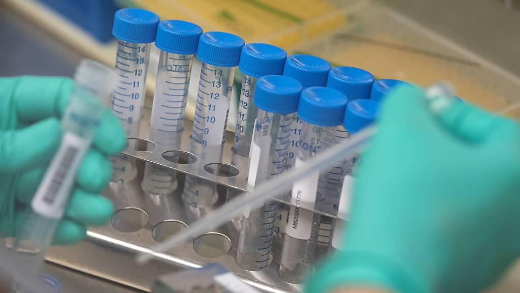 WHO: Corona-Pandemie bei Weitem nicht vorbei