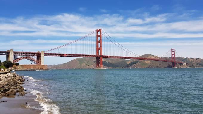 San Francisco Relax 7