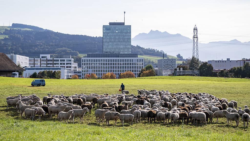 Mit einer Steuerbelastung von elf Prozent bleibt der Kanton Zug die Steueroase schlechthin in der Schweiz. (Archivbild)