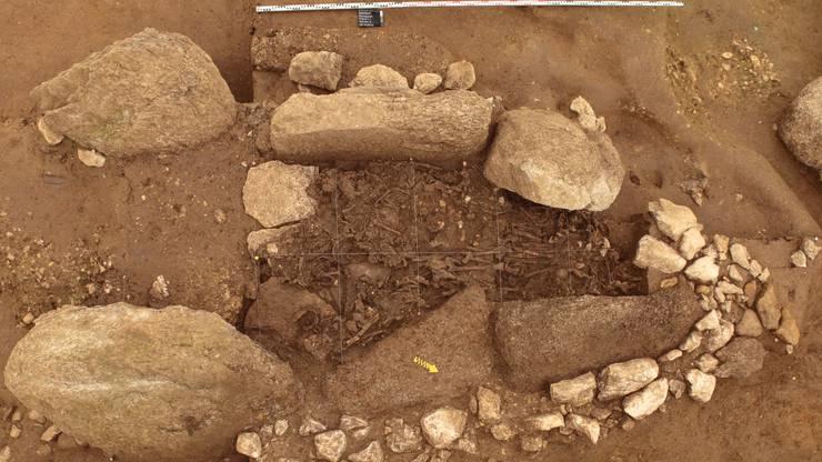 Diese Knochenfragmente zeigen, wer vor 5000 Jahren in Oberbipp gelebt hat.