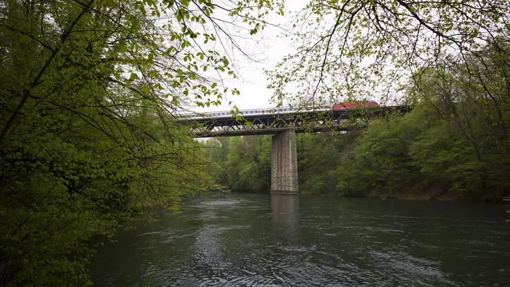 Unter der Eisenbahnbrücke ist die Limmat noch sehr naturnah