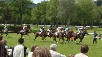 Action auf der Pferderennbahn im Schachen: Die Elite der Schweizer Traber versammelt sich im Schachen. (Archivbild)
