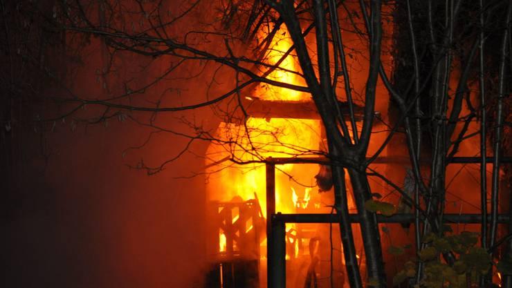 Das Gartenhaus brannte vollständig nieder.
