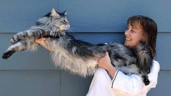 Stewie war 1,24 Meter lang. Im Bild mit Frauchen Robin Hendrickson.