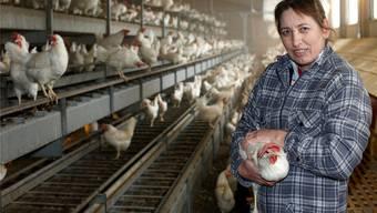Eine grosse Portion Frauenpower: Im grossen Stall der Eier-Produzentin Sonja Degen wuseln 8500 Legehennen gackernd umher.