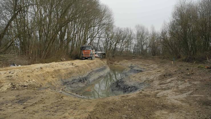 Im neuen Wannengraben liegt Grundwasser. Der Wasserspiegel schwankt je nach Wasserstand der Aare.