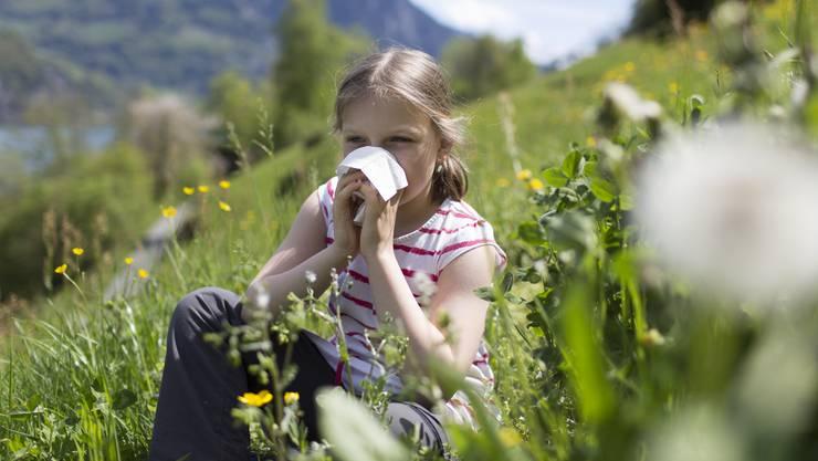 Fast jeder Fünfte in der Schweiz leidet an einer Pollenallergie.