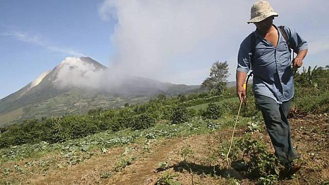 Ein Bauer sprüht Pestizide auf sein Feld - im Hintergrund der Vulkan Mount Sinabung