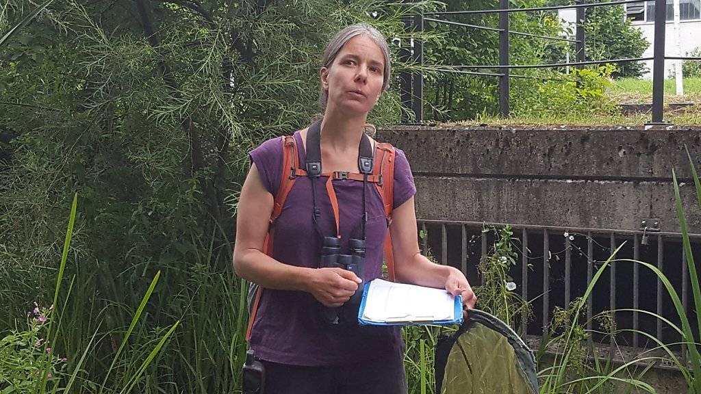 Mit Feldstecher, Schmetterlingsnetz und Notizblock: Umweltnaturwissenschaftlerin Simone Bossart zählt Kleintiere auf Zürcher Stadtgebiet.
