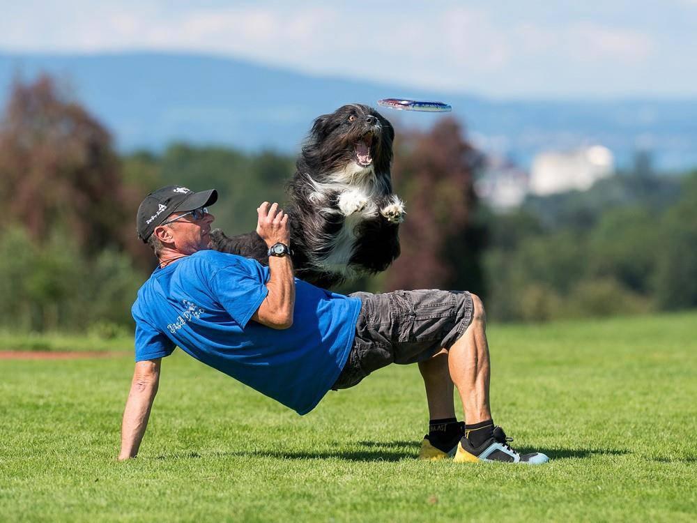 Hundefrisbee-Wettkampf in Arbon