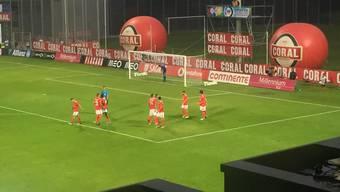 Haris Seferovic, Benfica