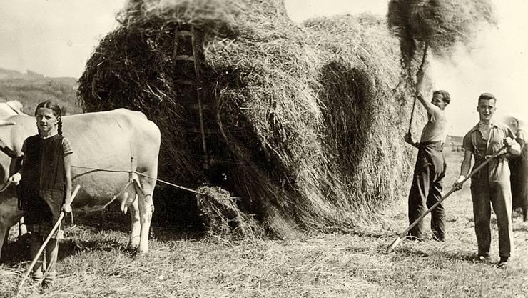 """Buchvernissage zu """"Ortsgeschichte Attelwil"""" von Markus Widmer-Dean –  historische Fotos aus dem Buch."""