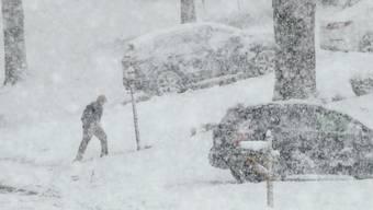 Durch dichtes Schneegestöber: Ein Mann geht in Springfield, Pennsylvania, vom Briefkasten zurück zu seinem Haus.