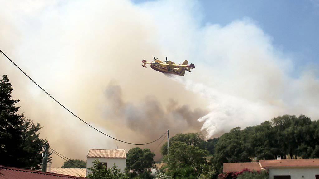 Löscharbeiten gegen Waldbrände auf Korsika (Archiv)