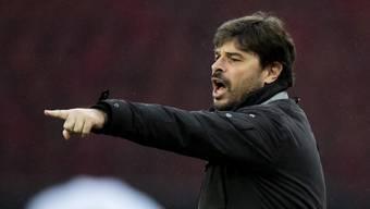 Ciriaco Sforza, hier während eines Spiels des FC Wil. Er soll neuer Basel-Trainer werden.
