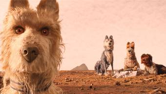 "Nach ""The Grand Budapest Hotel"" ist Regisseur Wes Anderson nun mit ""Isle of Dogs"" am Start."