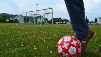 Die Gemeindeversammlung sagte klar Ja zum Bruttokredit über 780000 Franken für die Erweiterung des Fussballplatzes in Tägerig. Archiv