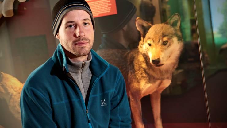 David Gerke vor dem Wolf des Solothurner Naturmuseums.
