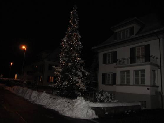 Zart leuchtet die Tanne am Bollmoosweg 6 in Wohlen