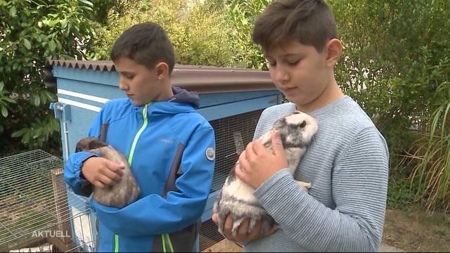 Hasen von Hund totgebissen: Happy End für Manuel