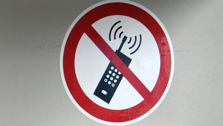 Sorge um die Gesundheit von Mensch und Tier: Die geplante Mobilfunkantenne in Thalheim befindet sich nahe beim Wohngebiet.