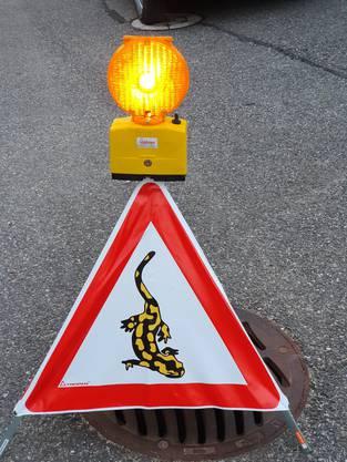 Ein Warndreieck mit Blinklicht weist auf die Amphibienzugstelle hin