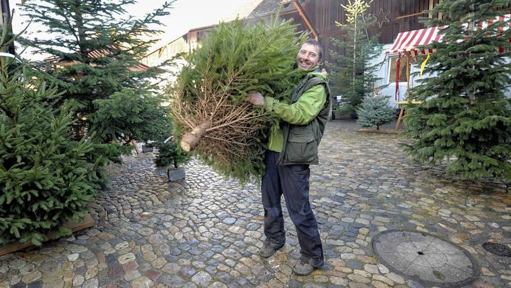 Bauer Lukas Wiesner aus Bottmingen produziert schon heute auf            seiner Weihnachtsbaum-Plantage in Bretzwil nur noch zehn Prozent Fichten.
