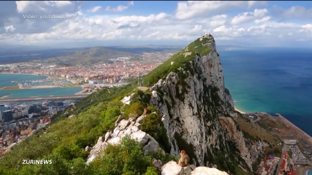 Nati-Gegner unter der Lupe: Das hat Gibraltar zu bieten