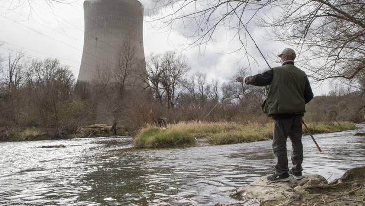 Der Umweltallianz ein Dorn im Auge: Die noch immer nicht abgeschalteten AKW. Im Bild der Kühlturm des Kernkraftwerks Gösgen.