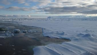 In der Antarktis haben Forscher einen interessanten Fund gemacht. (Symbolbild)