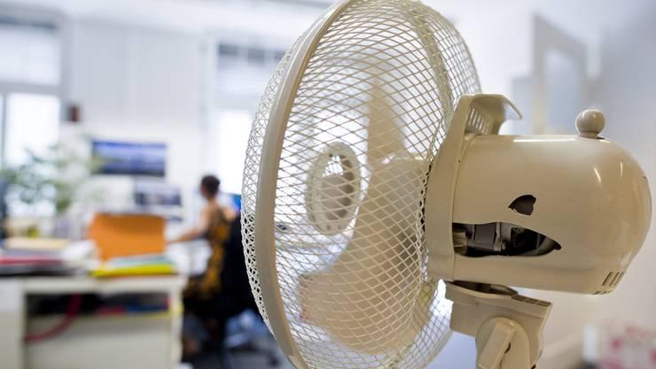 Ein Ventilator macht die Hitze in einem Büro erträglicher und verbraucht weniger Energie als ein mobiles Klimagerät. (Symbolbild)