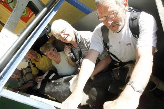 Alpaufzug am Niederbauen: Die Bahn hilft mit